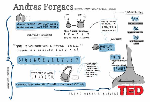Яркая визуализация помогает распространять и доносить идеи